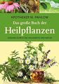 Das große Buch der Heilpflanzen Gesund durch die Heilkräfte der Natur