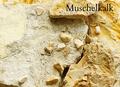 Muschelkalk