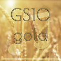 GS10 gold mp3