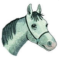Pferd 4