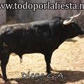Nº 82 2º Sobrero de Luis Algarra.
