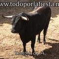 Nº 108 1º Sobrero de Luis Algarra.