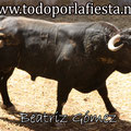 Nª 41 Lidiado por Sebastián Castella