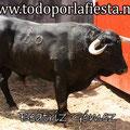 Nª 36 Lidiado por Sebastián Castella