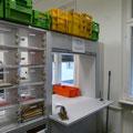 SF6 Schließfachwand mit Durchreiche für Pakete und Kurierpost, mir Rollladen verschließbar (auch elektrisch)