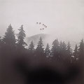 "Ramona Czygan |  ""Grey Birds fly into fog""  