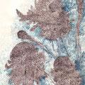 Méduses végétales, 42 x 29,7 cm