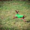 """28/09/2014 прогулка в парке """"Коломенское"""", Викусе 6 мес."""