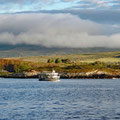 Leaving Bere Island at six in the morning