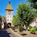 Quiet and lovely places in the Alsace of France