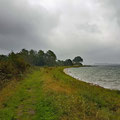 Late afternoon walk on a rainy day - south of Middelfart