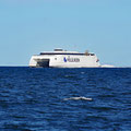 A fast ferry crossing our path at 48 knots (90 km/h) 110 m in length / 1'000 passengers / 12'400 hp with jet propulsion