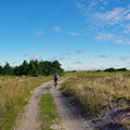 Heading for the lighthouse on the eastern tip of Anholt, first by bicycle