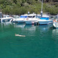 Snorkling in the cristal clear water in the Marina of Velas