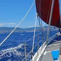 Escape from Ilhas Desertas to Madeira