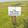 Free range, bio and cage keeping?!
