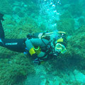 Diving at Faja Grande