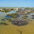 Flooding Ilha da Culatra