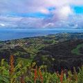 View from Pico Alto