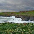 Southwest coast of Ireland (Toe Head)