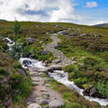 Heading of to Ben Macdhui (second highest mountain) on a luxurios path