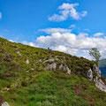 Walking seldom on swiss-standard hiking trails...
