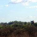 Dans la campagne aux environs de Colòn avec le moulin Forclaz