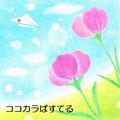 お花と紙飛行機