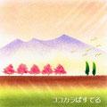 土手の桜・準インストラクター養成講座