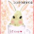 うさ cup