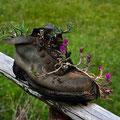 un vecchio scarpone trasformato in vaso