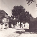 Oberndorf  - Friedenslinde am Glockenhof