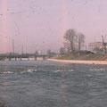 Der neue Saumain Februar 1961