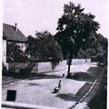 """Die """"Friedenslinde"""" in Oberndorf im Glockenhof neben dem Kirchenbrunne, aufgenommen von Lothar Öhring während der 1930er Jahre; die Friedenslinde wurde im Zweiten Weltkrieg zerstört"""