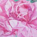 """Daniela"" Rose ""Marguerite Hilling"" 80 x 60 cm"