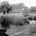 Hof Ganzow -  um 1920 | Blick von der Gerstenscheune über den Teich auf den Schafstall