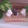 Silvia L. hat mir diese tollen Fotos von ihren Pummelponys geschickt! Vielen Dank :-) Freut mich sehr, dass sie dir gefallen!