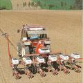 Fiat Traktor mit Kuhn Maxima Einzelkorn-Sämaschine (Quelle: Hersteller)