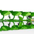 Amazone Cayros XMS 5-V (Quelle: Amazone)