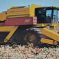 New Holland TR 96