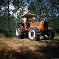 Fiat 980 DT Allradtraktor (Quelle: Centro Storico Fiat)
