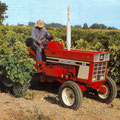 IHC 645E Plantagentraktor (Quelle: Hersteller)