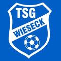 32_TSG Wieseck