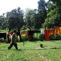 美しい庭 in リシケシ