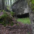 Natur-Zeit, Rigi