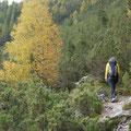 Nationalpark Schweiz