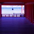厳島神社回廊 【2012.2.3】