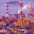 呉市警固屋町 高烏台公園からの眺望 【2012.1.22】