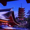 厳島神社から望む五重塔  【2012.2.3】