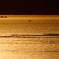 金色に染まる広島湾   廿日市市阿品 【撮影:2009.10.19】